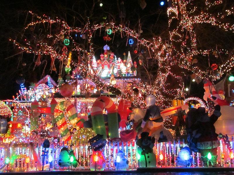 Christmas Tree Alexandria Va