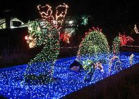 Christmas Light Shows in Virginia